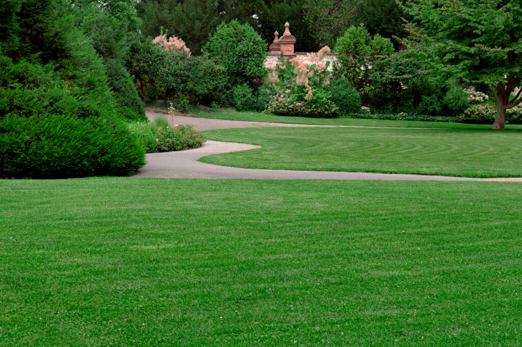 Lawn Care Services In Ogden Utah We Ll Help Keep Your